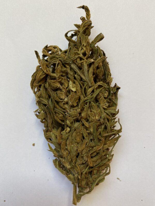 CBD BUD hemp flower