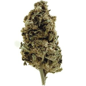 CBD Hemp Flower BUD